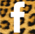 face Leopard
